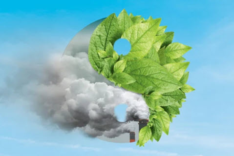To Thrive in a Low-Carbon Future, Think Systems